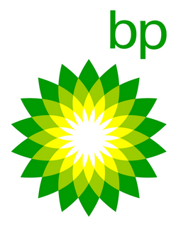 "The bp green flower logo with lowercase ""bp"" letting in the top right"