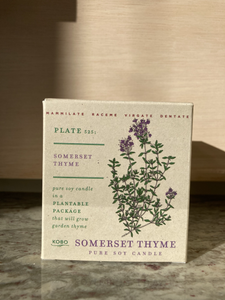 Plant the box candle - Thyme