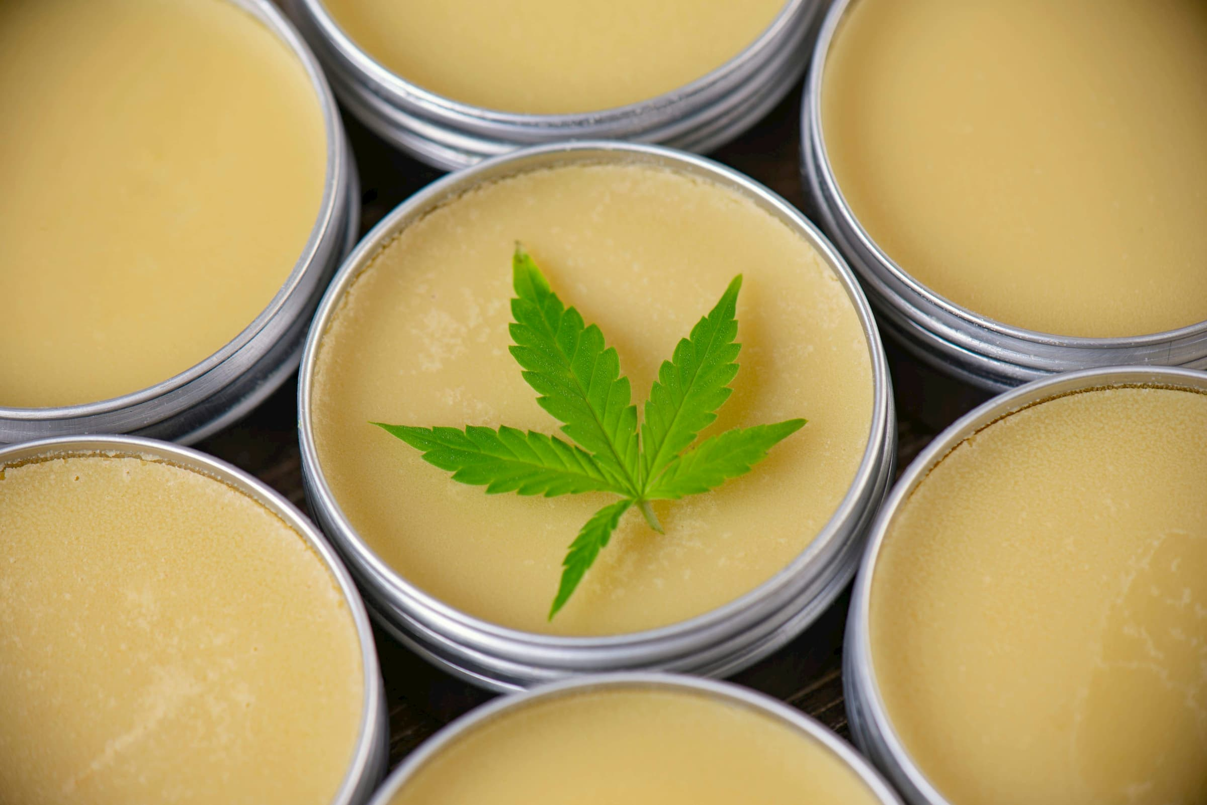 topical cbd cream for humans