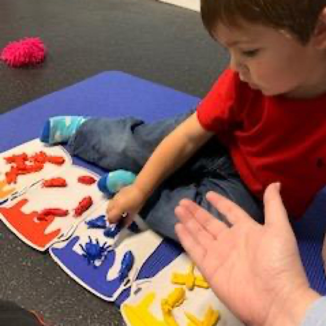 Pre-K Camp (Weekly) - Ignite the Senses Children's Gym