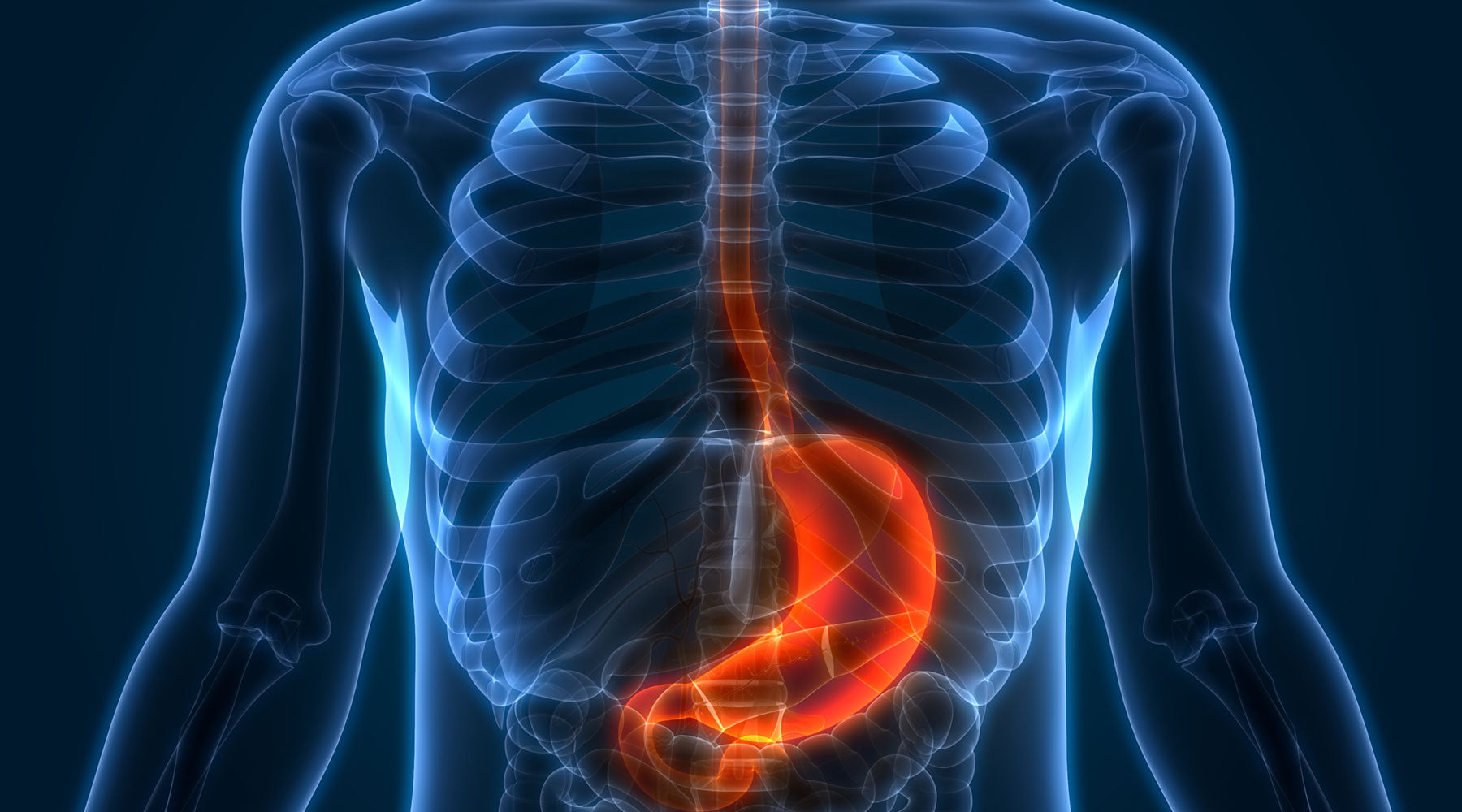 Stomach Acid Benefits That Reflux Medication Could Stop