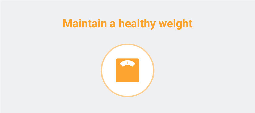 maintain a healthy weight icon