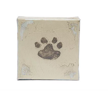 Load image into Gallery viewer, Green Birdie Paw Print Kit