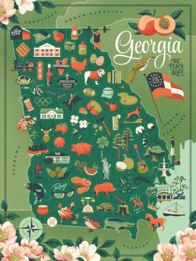 True South Georgia Puzzle