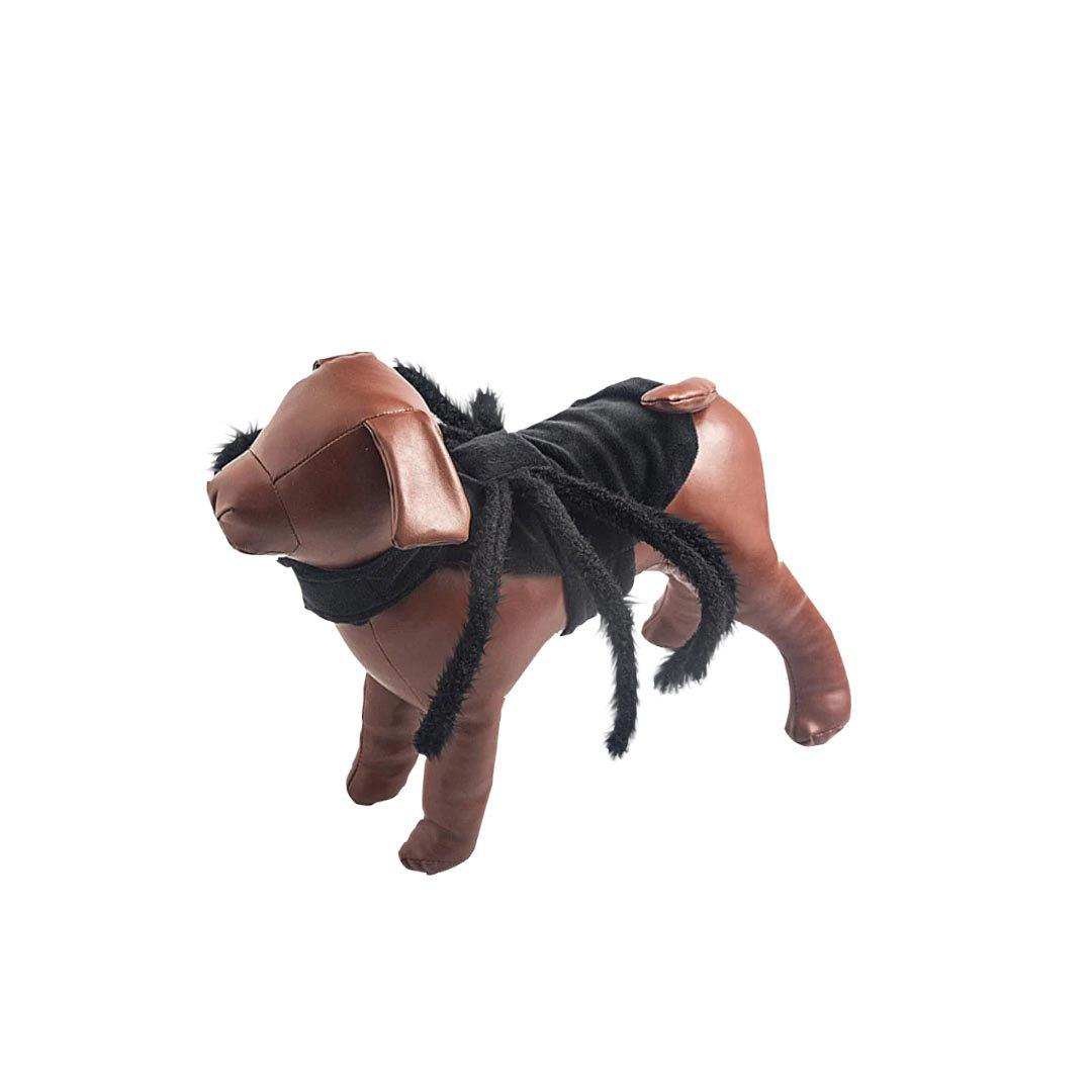 Halloween Spider Dog Costume