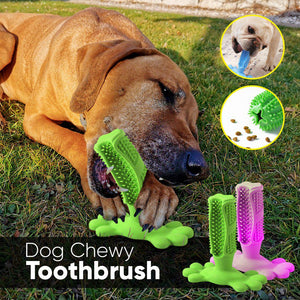 Dog Chewy Toothbrush