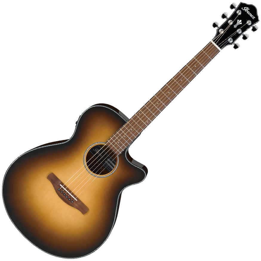 Ibanez AEG50 DHH Acoustic Guitar - Brown