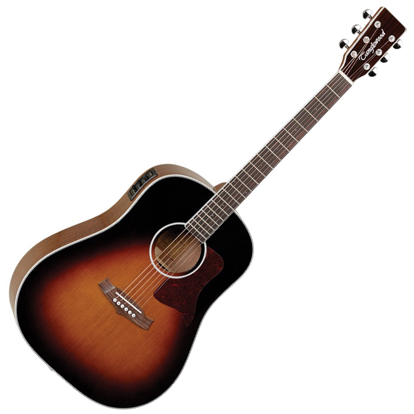 Tanglewood 15SDTE Sundance Performance Pro Sloped Shoulder Dreadnought Torrefied Top with ABS Case