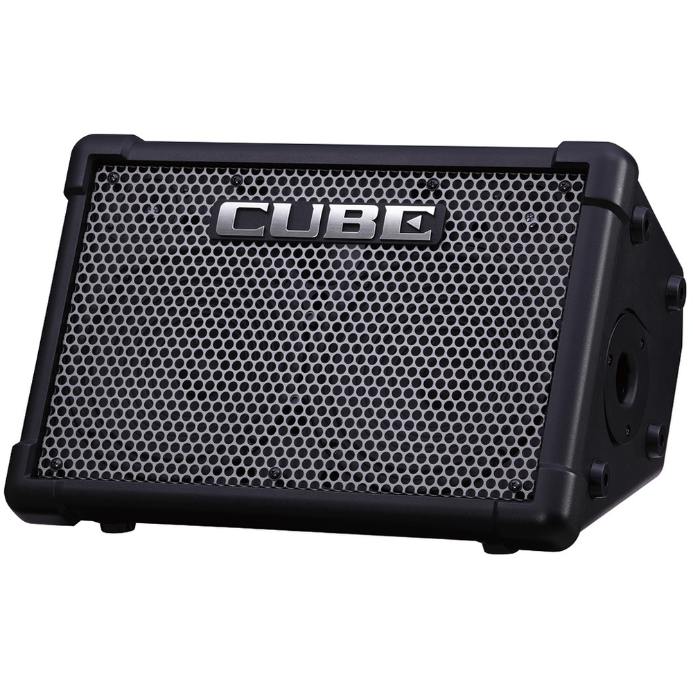 Roland Cube Street EX - Battery Powered Stereo Busker Amplifier