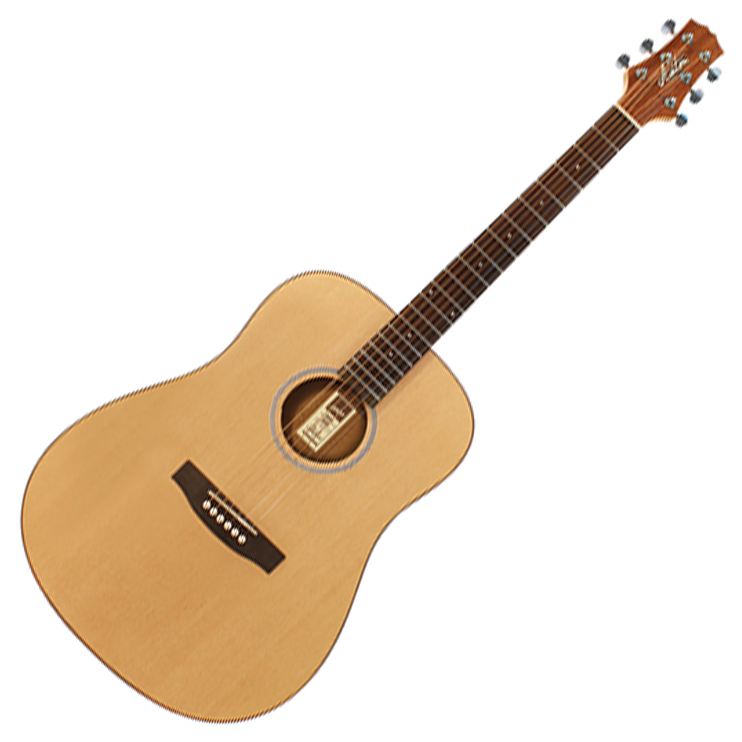 Ashton D20 NTM Acoustic Guitar - Natural