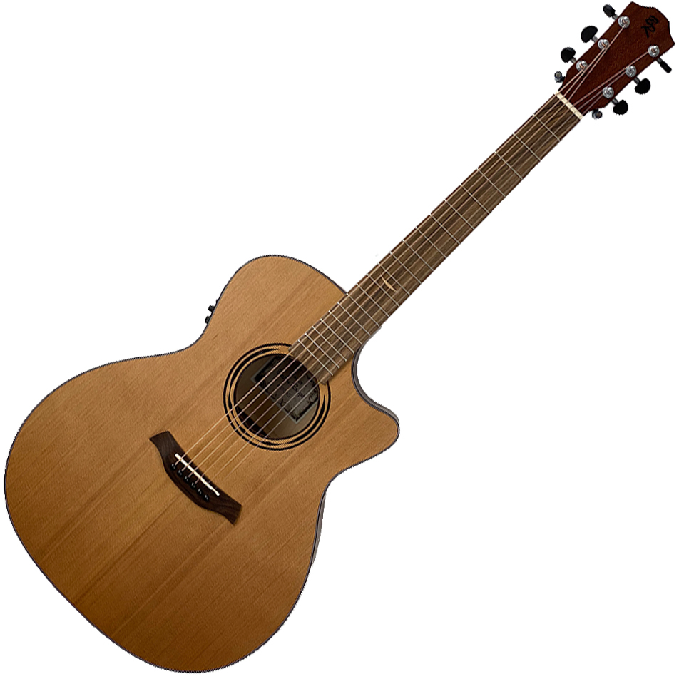 Baton Rouge AR21C/ACE, Grand Auditorium w/Pickup - Solid Cedar/Exotic Maple