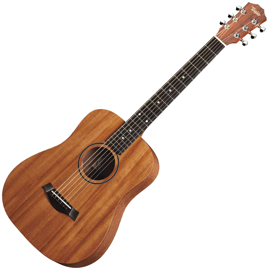 Taylor BT2 Acoustic Guitar