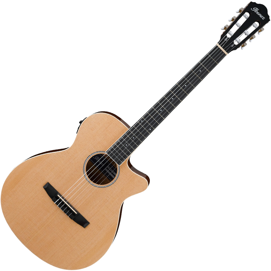 Ibanez AEG7TN NT Acoustic Guitar - Natural