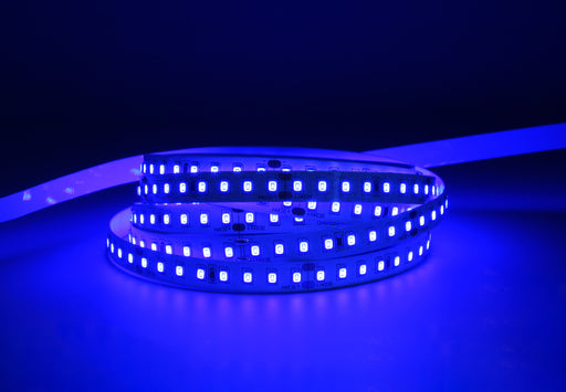 YUJILEDS® Single Color Blue LED Flexible Strip