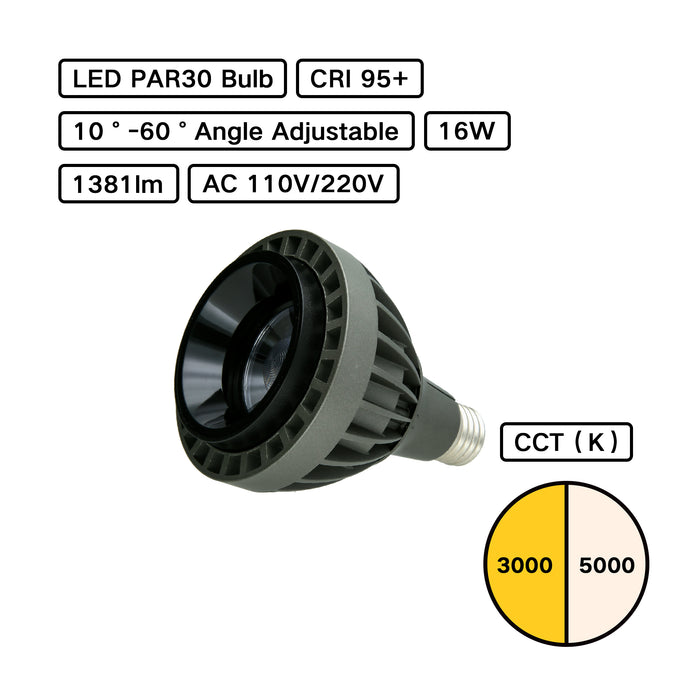 High CRI Dimmable Angle Adjustable  PAR30 Bulb