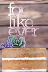 Copper For Like Ever Cake Topper