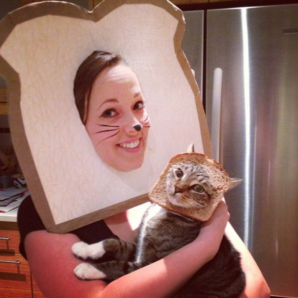cat loaf cat bread costume