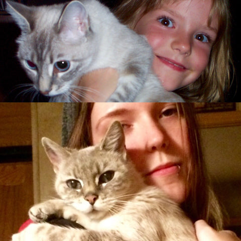 then and now pets