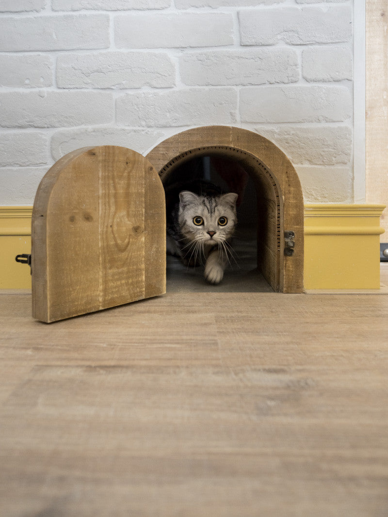 How about an interior cat door stealthily disguised as a hobbit hole for your very own hungry hobbit? Small hairy perpetually hungry; the resemblance is ... & 11 Stylish and Creative Ideas for Decorative Cat Doors \u2013 Meowingtons Pezcame.Com