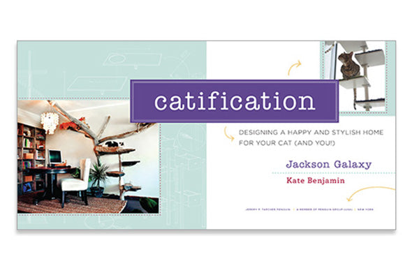 catification jackson galaxy
