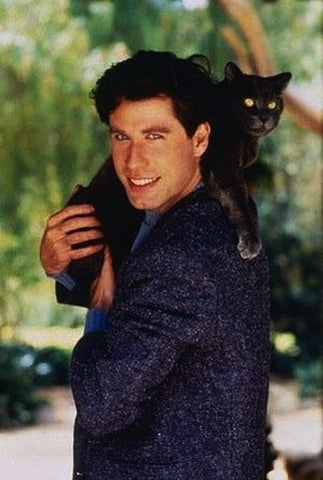John Travolta cat meowingtons