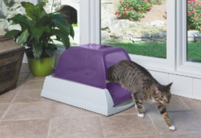 Meowingtons automatic cat litter box review