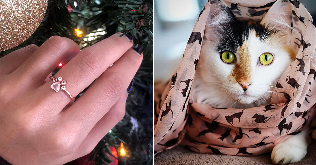 """The BLACK FRIDAY Accessory Guide Every """"Crazy Cat Lady"""" Needs To See"""