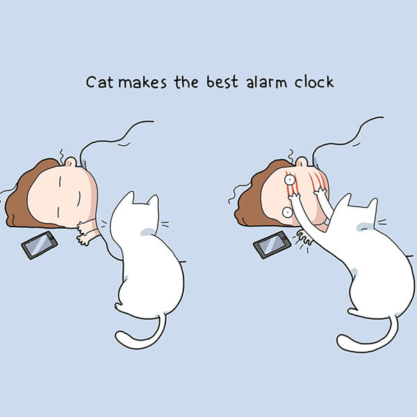 cat alarm clock