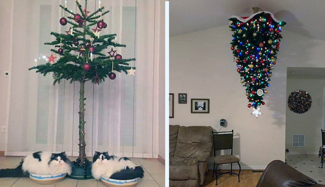 Genius Hacks To Cat Proof Your Christmas Tree Meowingtons