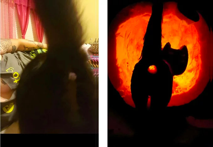 13 Of The Best Cat O Lanterns We Could Find Meowingtons