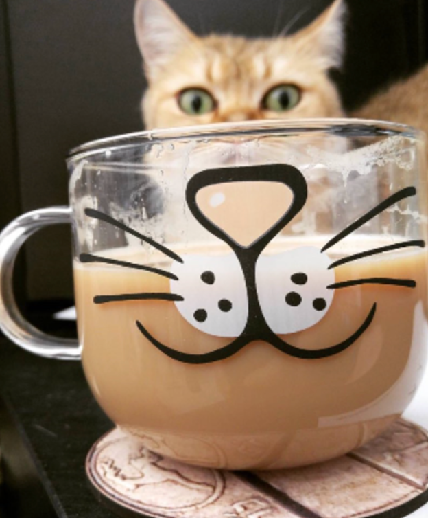 cat face mug glass coffee cat mug