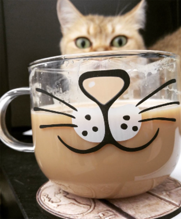 cat face mug glass cat mug