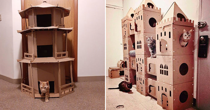 15 Cardboard Cat Fortresses To Inspire Your Next DIY Project