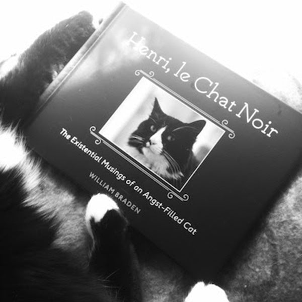 henri le chat noir book