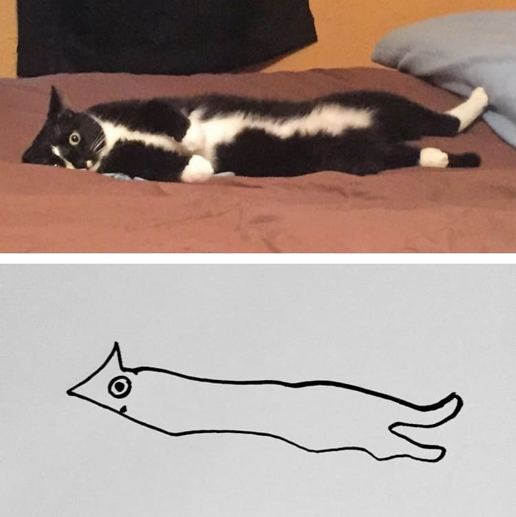 Minimalist cat art on reddit will change the way you look for Minimal art reddit