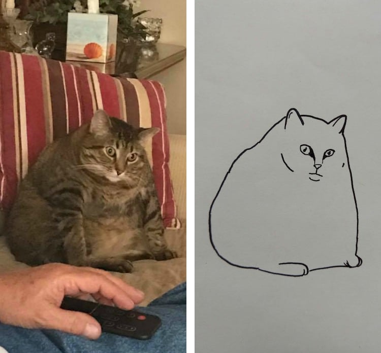Minimalist Cat Art on Reddit Will Change the Way You Look at
