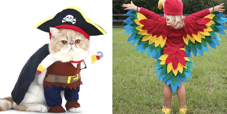 pirate cat costume halloween cat costume