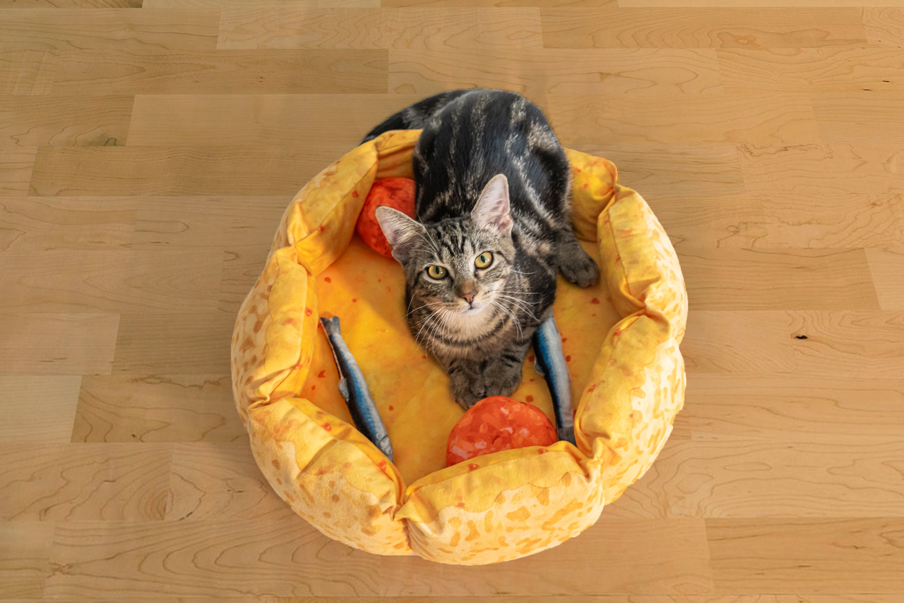 Cute Pizza Cat Bed