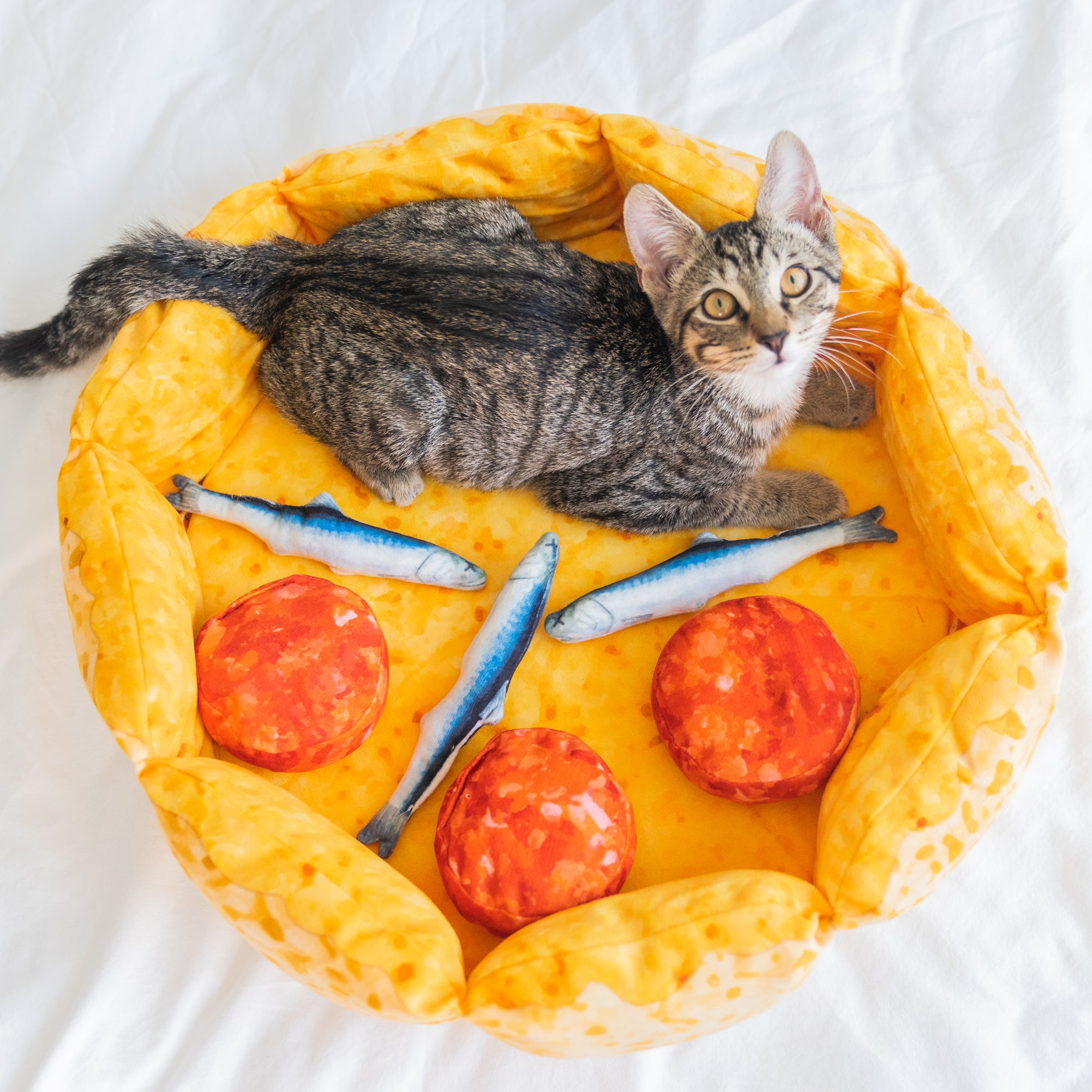 meowingtons pizza cat bed
