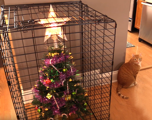Saran Wrap the entire tree to prevent tempting dangly baubles for your cat  to attack. Bonus: it stores great for next year. - Genius Hacks To Cat-Proof Your Christmas Tree €� Meowingtons
