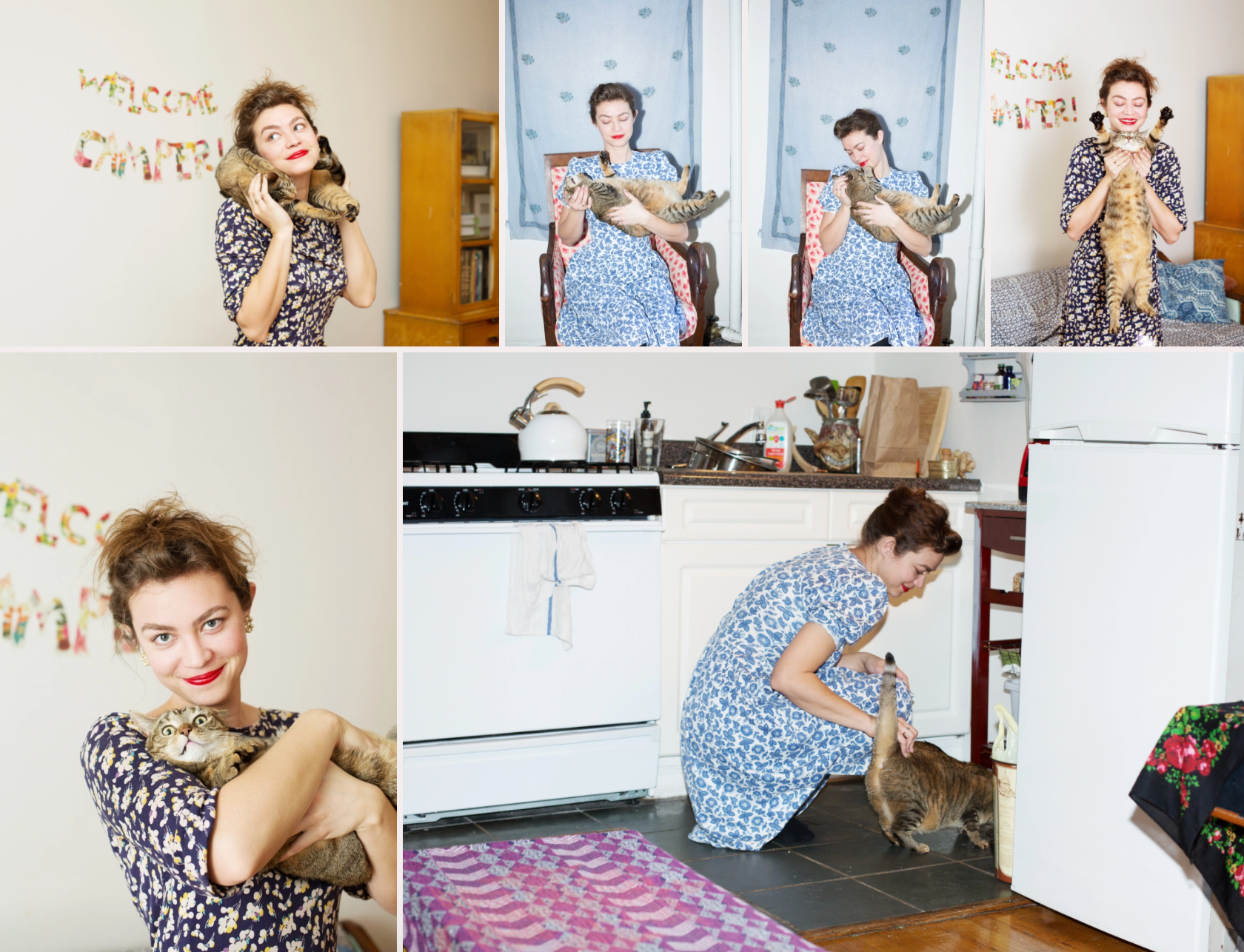 vintage cat lady crazy cat lady
