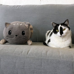Milton The Cat Pillow Stuffed Animal