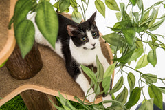Luxury Cat Tree House