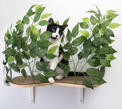 Floating Cat Wall Shelves