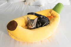 banana cat bed with kitten