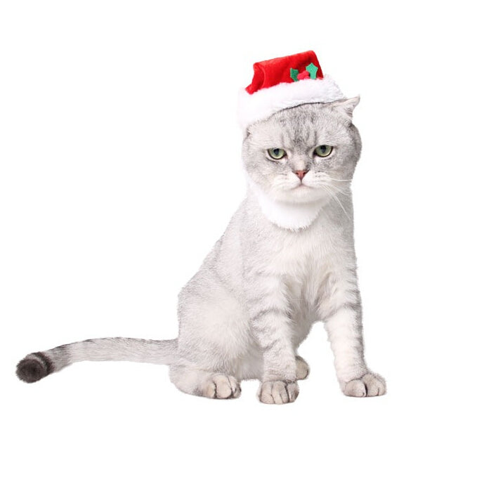Christmas Santa Cat Hat