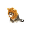Lion Cat Costume