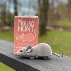 Mouse Hunt Robot Cat Toy App Controlled