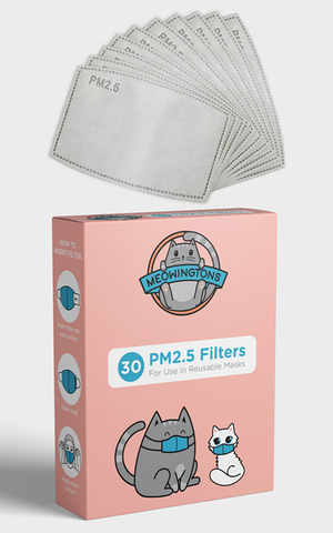PM2.5 Replacement Filters (30 Pack)
