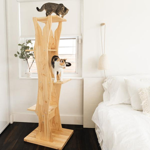 Milton's Perch Tree Cat Tower